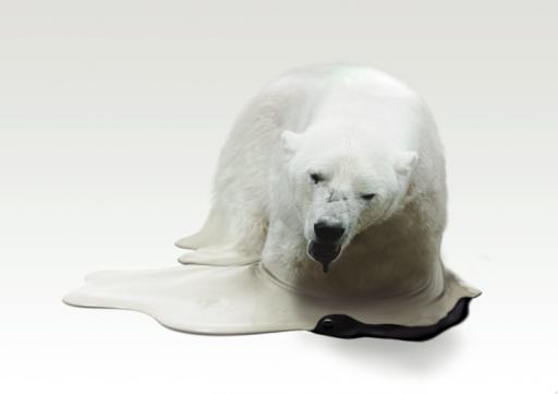 polar_fin2